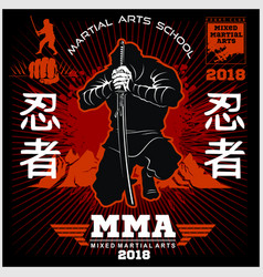 ninja warrior fighter - mixed martial art vector image