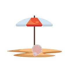 umbrella beach with shell sea scene vector image