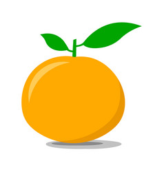 ripe tangerine on a white background vector image