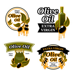 olive oil bottle label set with black fruit leaf vector image vector image