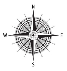 detailed compass windrose vector image