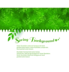Background with green shrubs vector image
