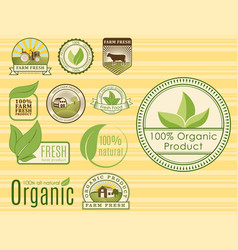 Bio farm organic eco healthy food templates and vector