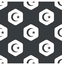 Black hexagon Turkey symbol pattern vector image