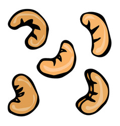 Cashew nuts doodle style design isolated vector