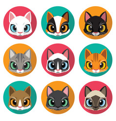 Cute cats collection vector