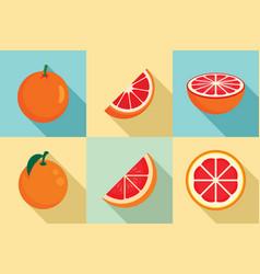 grapefruit icons set flat style vector image