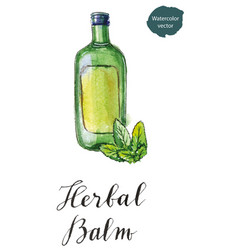 Green bottle of herbal balm with green leaves vector