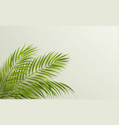 green leaf palm tree on gray background vector image