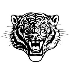 head roaring tiger black and white vector image