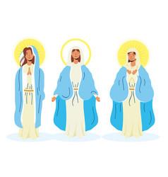 Miraculous virgins assumption mary vector