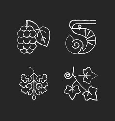 Seasonal allergen causes chalk white icons set vector