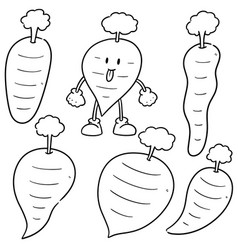 set of carrot vector image
