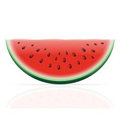watermelon 02 vector image