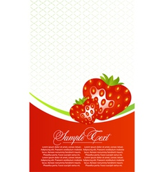 abstract card with strawberry fruits vector image vector image