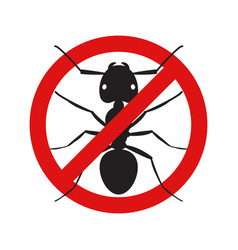 anti no ant insect symbol vector image
