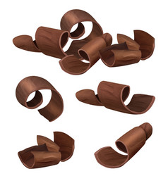 chocolate curl shaving parts black chocolate vector image