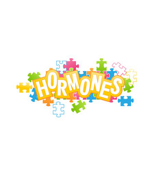 Human hormones collected from puzzles vector