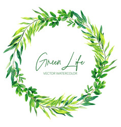 the green watercolor leaves and branches wreath vector image