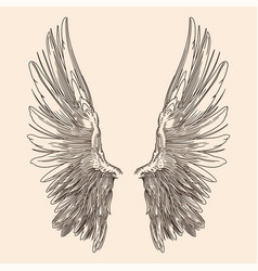 Two wings an angel vector