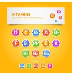 Vitamins vector image