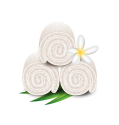 Spa towels isolated on white vector image vector image