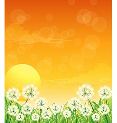 A special paper with a sunset design vector image