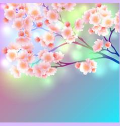 blossom branch of sakura flowers vibrant gradient vector image