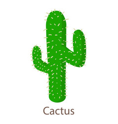 cactus icon isometric 3d style vector image