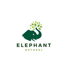 elephant head leaf leaves tree logo icon vector image