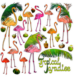 flamingo and palm leaves vector image