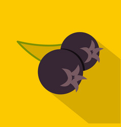 Fresh chokeberry or aronia berry icon flat style vector