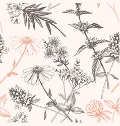 hand drawn meadow flowers seamless pattern vector image