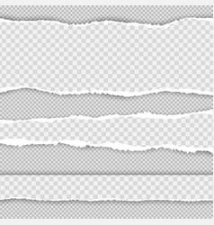 horizontal torn paper edge realistic torn vector image