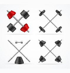 realistic detailed 3d barbell and dumbbells vector image