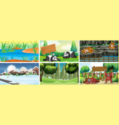 six scenes with animals in park vector image
