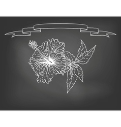 Card with hibiscus flower on chalkboard vector image