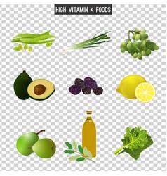vitamin k in food vector image