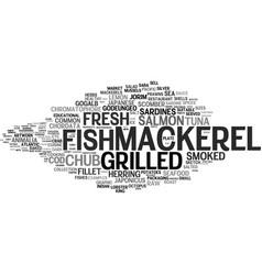 mackerel word cloud concept vector image