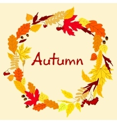 Decorative colorful autumn leaves frame vector