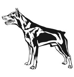 decorative standing portrait of dog miniature vector image