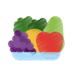 healthy food icon image vector image