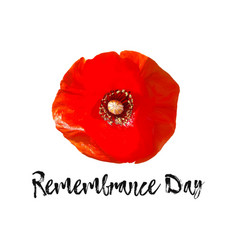 Remembrance day card banner anzac day vector