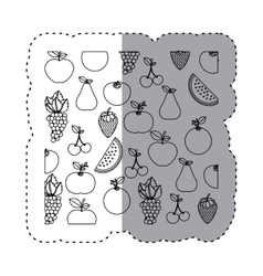 Sticker contour background with fruits in vector