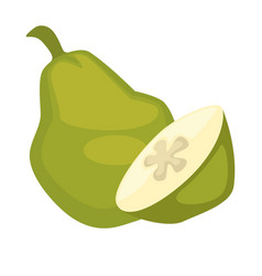 pear whole and half isolated on white green tasty vector image vector image