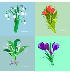 Set spring flowers Flet design vector image vector image