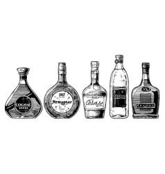 types of brandy vector image
