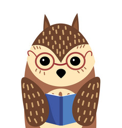 A cartoon portrait of an owl with book stylized vector