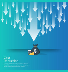 Business crisis concept money fall down with vector