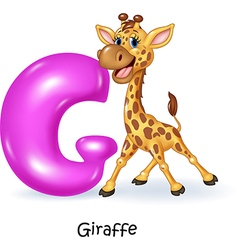 Cartoon of G letter for Giraffe vector image